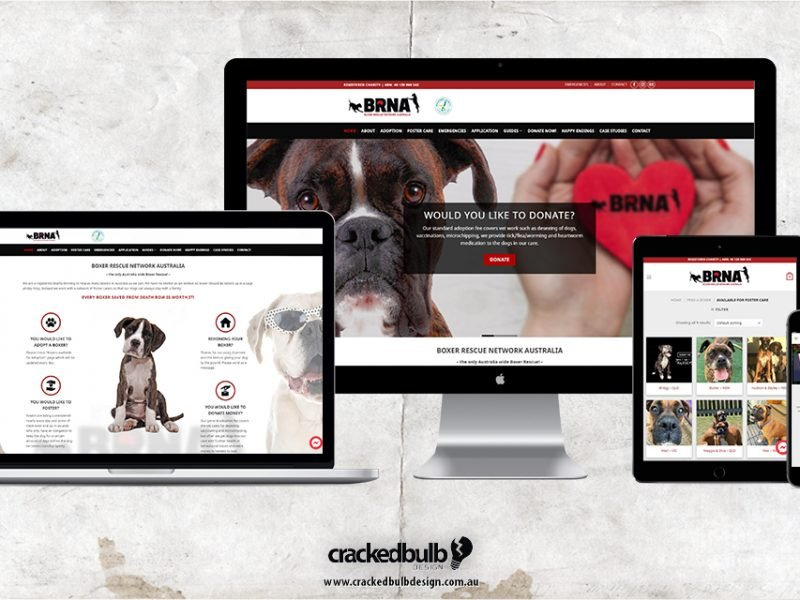 Boxer Rescue Network Australia Web Design