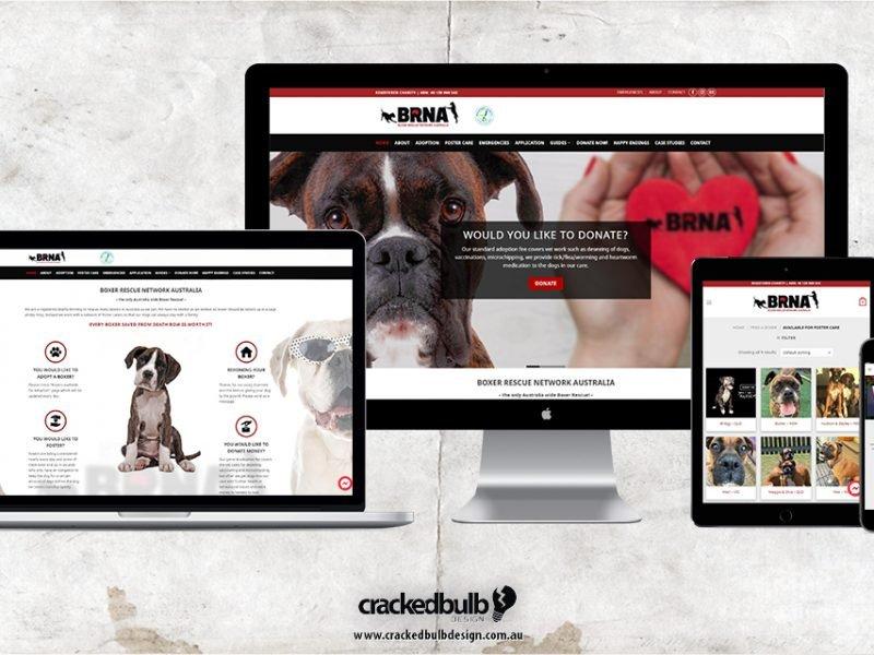Boxer Rescue Network Australia Web Design